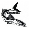 ТОО  BARRACUDA